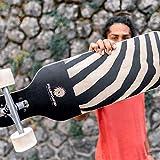 "RollerCoaster ""Zebra"" Longboard für Anfänger – Cruiser Longboard, drop through"